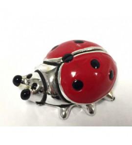 Coccinella mini rossa laurea