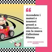 """😭Il Covid quest'anno ha oscurato anche il """"Gran Premio di F1 di Monza""""  ❤️ La nostra bella città è silenziosa in questi giorni di prove, si sente solo il rumore dei motori che sfrecciano nel nostro Parco, manca il pubblico, ma noi abbiamo la soluzione🏎🏎  🏎🏎VROOM! accendete i motori e tenetevi pronti a sfrecciare tra i tavoli dei party🏎 più movimentati con la nuova """"Collezione Disney""""  Per informazioni ☎️ 0392001976 📲 3713894087 💻 www.astrobomboniere.it Info@astrobomboniere.it"""